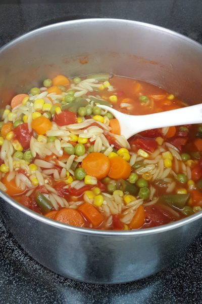 Quick Easy Vegetable Soup for the Lazy Girl